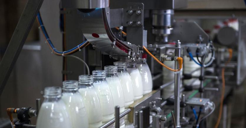 Corte di Giustizia Ue: il latte di soia non è latte